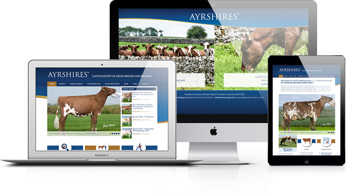 Ayrshires Cattle Society Responsive Display