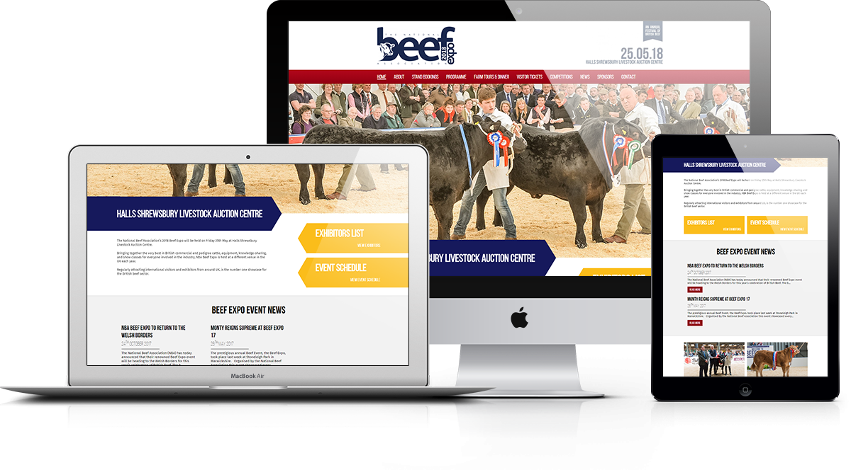 Beef Expo Responsive Display