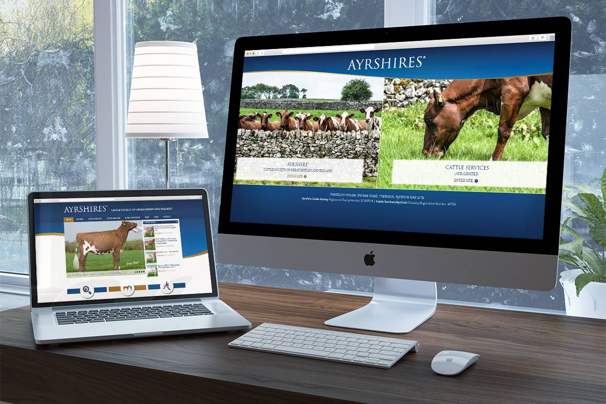 Ayrshires Cattle Society